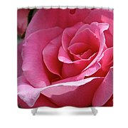 Cotton Candy Pink Shower Curtain