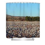 Cotton Landscape Protected 02 Shower Curtain