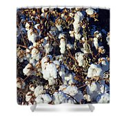 Cotton The Thread That Binds Shower Curtain