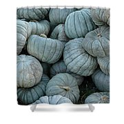 Counting Squash Shower Curtain