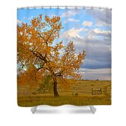 Country Autumn Landscape Shower Curtain by James BO  Insogna