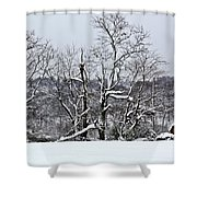 Country Christmas 5 Shower Curtain