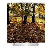 Country Color 11 Shower Curtain