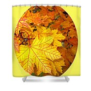 Country Color 18 Shower Curtain