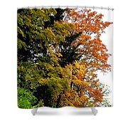 Country Color 2 Shower Curtain