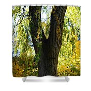 Country Color 20 Shower Curtain