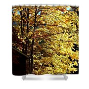 Country Color 22 Shower Curtain