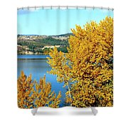 Country Color 5 Shower Curtain