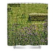 Country Gardens Shower Curtain
