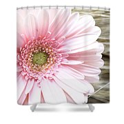 Country Pink Shower Curtain