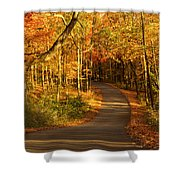 Country Road Shower Curtain