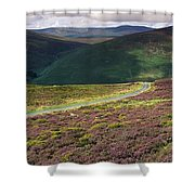 Country Road Passing Through A Shower Curtain