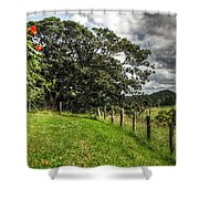 Countryside With Old Fig Tree Shower Curtain