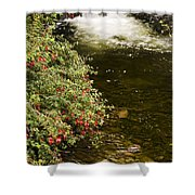 County Kerry, Ireland Fuchsia Bush Shower Curtain