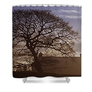 County Tyrone, Ireland Winter Morning Shower Curtain