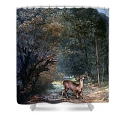 Courbet: Hunted Deer, 1866 Shower Curtain