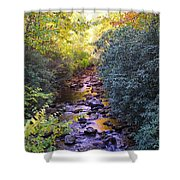 Courthouse River In The Fall 3 Shower Curtain