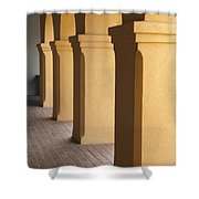 Courtyard Entry Shower Curtain