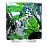 Courtyard Feelings Cafe Nola Shower Curtain