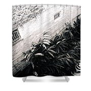 Courtyard Royal Street New Orleans Shower Curtain