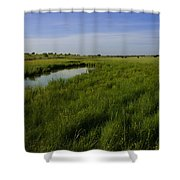 Cow Field 1 Shower Curtain