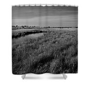 Cow Field 2 Shower Curtain