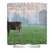 Cow On The Foggy Field Shower Curtain