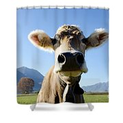 Cow With A Bell Shower Curtain