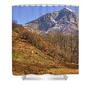 Cowhouse And Snow-capped Mountain Shower Curtain