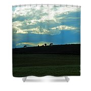 Cows On The Hill Shower Curtain