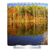 Coxsackie Reflection Shower Curtain