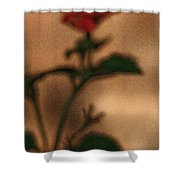 Cracked Flower Shower Curtain
