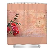 Cracked Wall And Rose Shower Curtain
