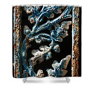 Crackled Coats Shower Curtain