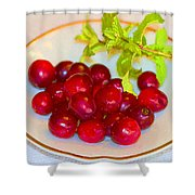 Cranberries And Mint Shower Curtain