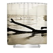 Crane At Sunset Shower Curtain