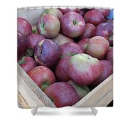 Crate Of Apples Shower Curtain by Kimberly Perry