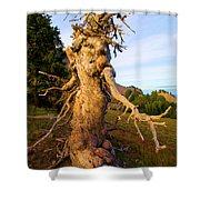 Crater Lake Kachina Shower Curtain