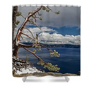 Crater Lake Pine Shower Curtain