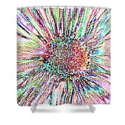 Crazy Daisy Colored Pencil Photoart Shower Curtain