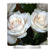 Creamy Roses I Shower Curtain