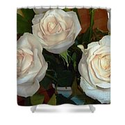 Creamy Roses II Shower Curtain