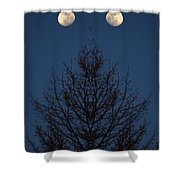 Creation 123 Shower Curtain