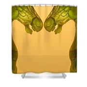 Creation 125 Shower Curtain