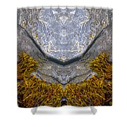 Creation 172 Shower Curtain