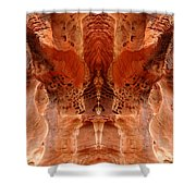 Creation 216 Shower Curtain