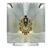 Creation 34 Shower Curtain