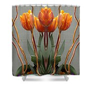 Creation 512 Shower Curtain