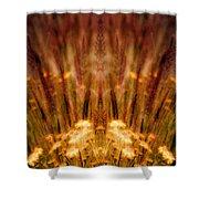 Creation 57 Shower Curtain