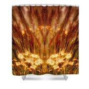 Creation 58 Shower Curtain